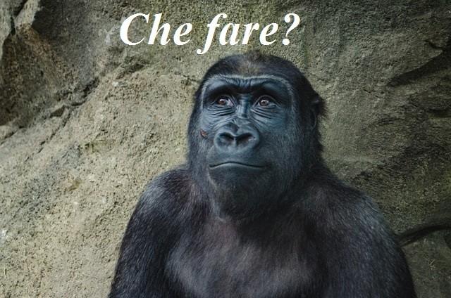 Инфинитив в итальянском языке